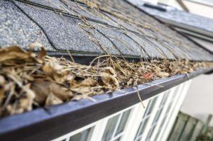 autumn maintenance gutters